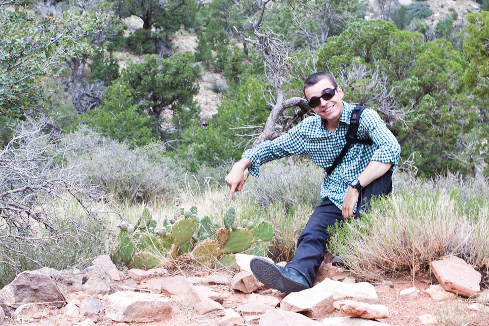 The hike down the Grand Canyon (part 1)